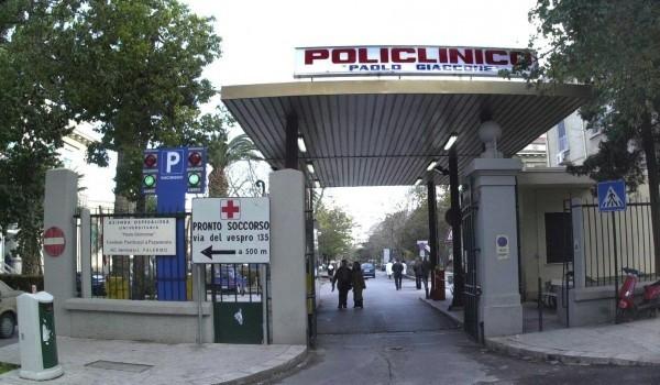 Palermo, incarico per laureato