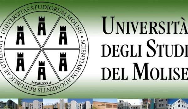 UniMolise: borse di studio per il dottorato