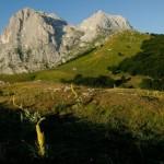 Abruzzo, concorso per il Parco nazionale del Gran Sasso