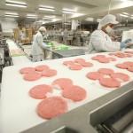 Lavoro Abruzzo: Amadori cerca nuovi operai